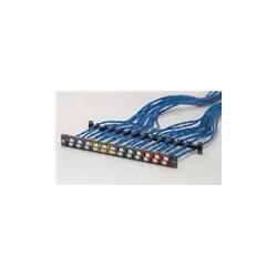 N/P : 1455251 - AMP - U/UTP TrueNet Patch Panel 24 ports