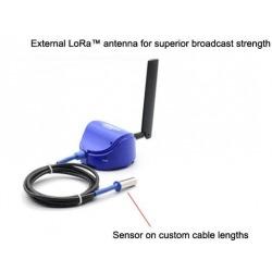 Antena Externa Lora Wan Sensor Temperatura y humedad AKCP